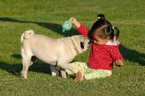 Sheba and the Baby