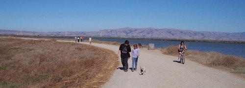 Adam, Julia and Sheba walking back