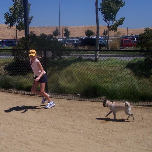 Little Sheba chasing Julia at the dog park