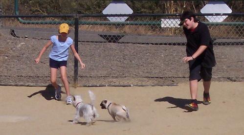 Running around with Adam and Julia and Rumsfeld