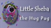 Little Sheba Banner