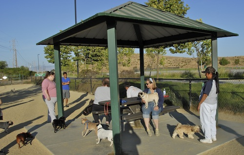 June 17, 2007 Mountain View Dog Park